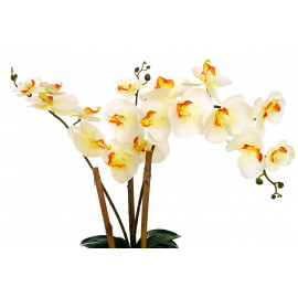 Orchidee 55 cm Weiss