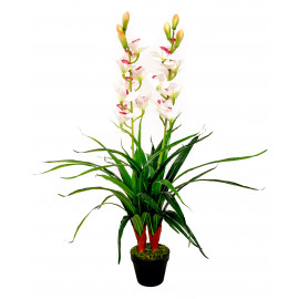 Orchidee weiss 1,00 m